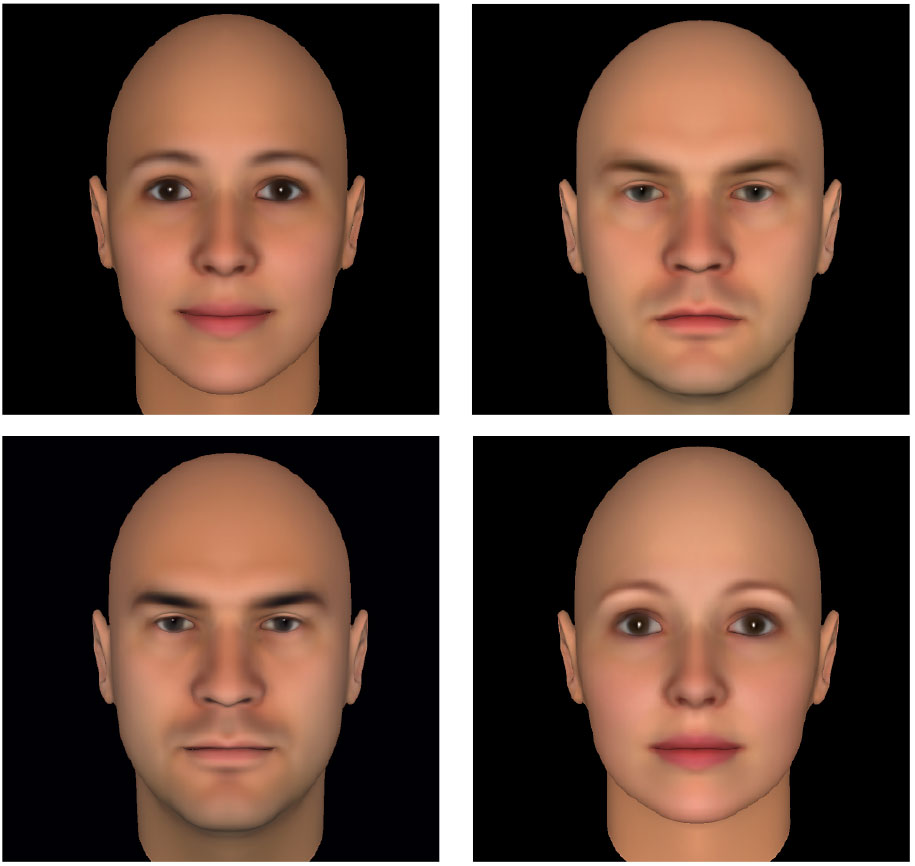 Image result for todorov face perception