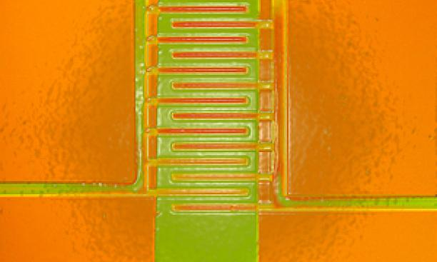 18501-Electric_Pop_Art_lr-thumb-300x239-18500.jpg