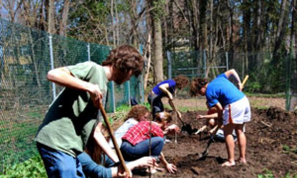 7178-garden_workday-thumb-300x448-7177.jpg