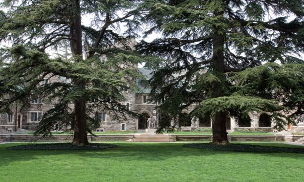These two cedars of Lebanon were grown from seeds collected by Harvard University in the Cilician Mountains in southern Turkey, and were gifts to Dean Andrew Fleming West 1874 from Charles Sargent Sprague, who mentored Farrand.  West, whose statue is in t