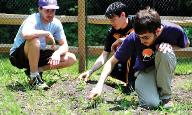 ORGANIC GARDENING: Students and alumni work together at Forbes College.