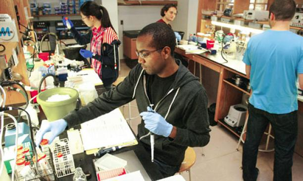 Through its Program for Diversity and Graduate Recruitment, the Department of Molecular Biology, in collaboration with the Lewis- Sigler Institute for Integrative Genomics, has made great strides in diversifying its graduate student body.
