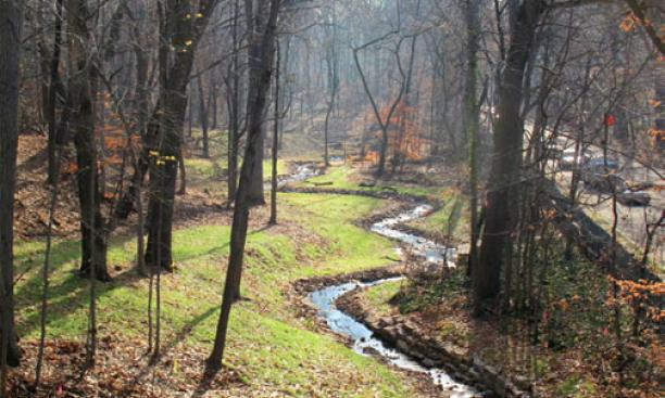 One of Princeton's natural treasures, a stream to the east of Washington Road, has recently been restored.