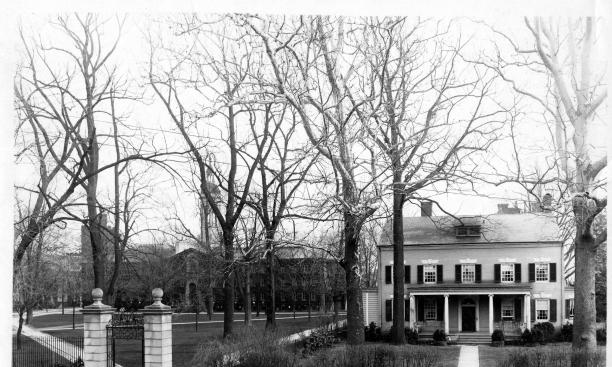 Maclean House with sycamores (1914): No ballplaying