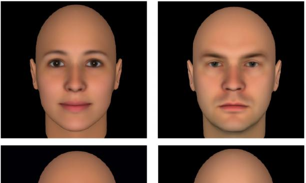 Todorov has found that faces with more feminine features (top left) are perceived as more trustworthy, while faces seen as untrustworthy tend to have more masculine features (top right).  Faces with more mature features (bottom left) are perceived as more