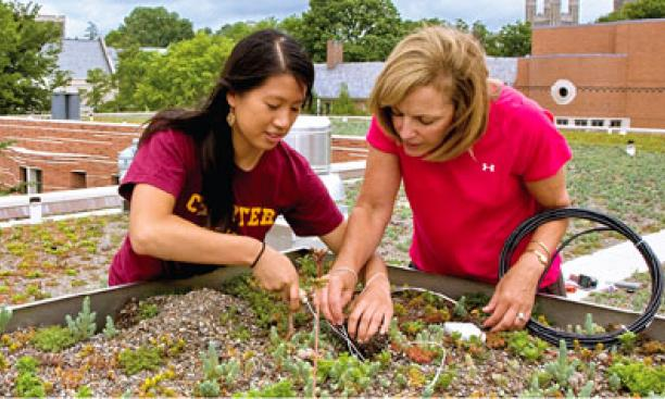 Jessica Hsu '10 (left) and Eileen Zerba, director of undergraduate laboratories in the Princeton Environmental Institute, at work on one of Butler College's green roofs.