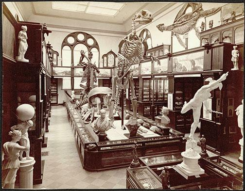 The museum in Nassau Hall.