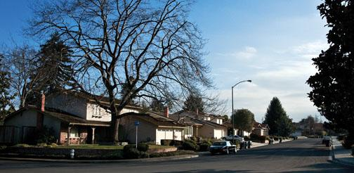 The Princeton entrepreneurs do their work in a nondescript house on this suburban street in Mountain View, Calif.
